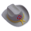 Economy Confederate Officers Hat