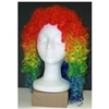 Clown Wetlook Wig
