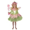 Garden Fairy Child Costume
