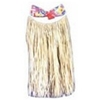 Hawaiian Grass Skirt & Bra Top Set