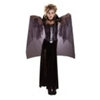Midnight Vampira Adult Costume