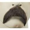 Theodore Roosevelt Moustache
