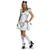 Disney Alice in Wonderland Alice – Adult Costume