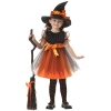 Orange Charmed Witch Toddler Costume