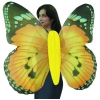 Jumbo Adult Monarch Butterfly Wings