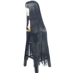 1960's Cher Deluxe Adult Wig With Bangs