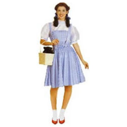 Dorothy Adult - Wizard Of Oz Costume