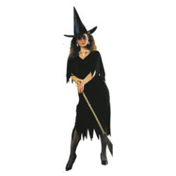 Haunted House Witch Adult Costume