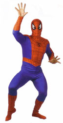 Spiderman / Spider-Man Adult Costume