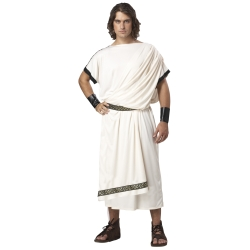 Classic Men's Toga Adult Costume