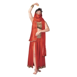 Harem Dancer Deluxe Adult Costume