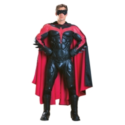 Robin Collectors' Quality Deluxe Costume