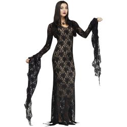 Lace Gown Adult Costume