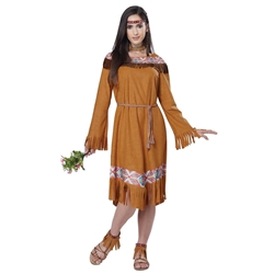 Classic Native American Maiden Adult Costume