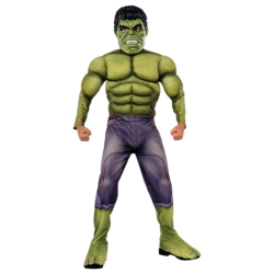 Avengers Hulk with Muscles Kids Costume