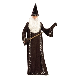 Wizard Robe Adult Costume