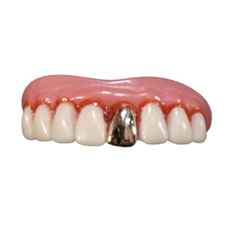 Billy Bob Teeth Full Grill Gold