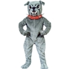 Bull Dog With Collar Mascot - Sales