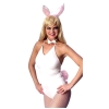 Bunny - Sexy Costume Kit