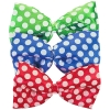 Clown Bow Tie