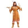 Native American Maid Adult Plus Size Costume