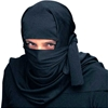 Ninja Hood/Headpiece