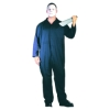 Overalls Adult Costume