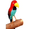 Multi-Color Feather Parrot Prop