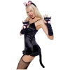 Pretty Kitty Costume Accessory Kit