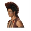 Native American Indian Warrior Wig