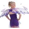 Raindrop Fairy Wings