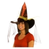 Metallic Witch Hat