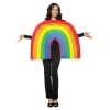 Rainbow Adult Costume