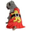 Sir Barks-a-Lot Pet Costume