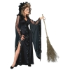 Witch Deluxe Adult Costume