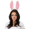 Moveable Rabbit Ears