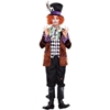 Hatter Madness Adult Costume