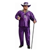 Big Daddy Plus Size Adult Costume