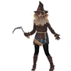 Creepy Scarecrow Tween Costume