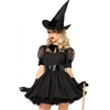 Bewitching Witch Sexy Adult Costume
