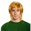 Legend of Zelda Link Adult Wig