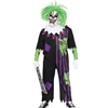 Demented Clown Kids Costume