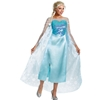 Disney's Frozen Queen Elsa Adult Costume