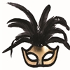 Gold Half Mask with Feathers