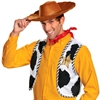 Toy Story Woody Adult Accessory Kit