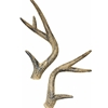 Classic Antlers