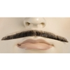 Deluxe Errol Flynn Pencil Mustache - Blend