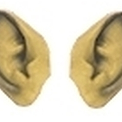 Pointed Ears - Beige
