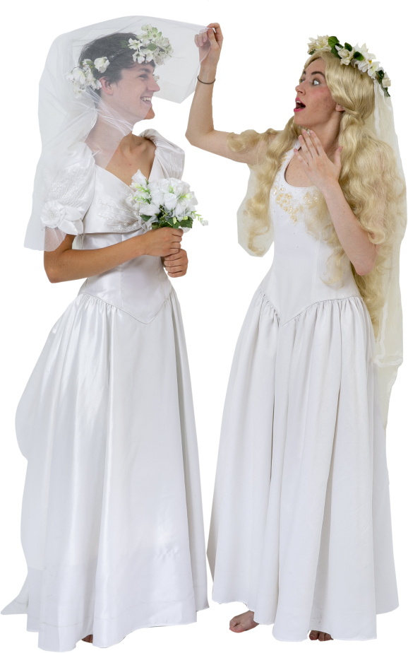 Mamma Mia Sky and Sophie Wedding Dresses Rental Costumes