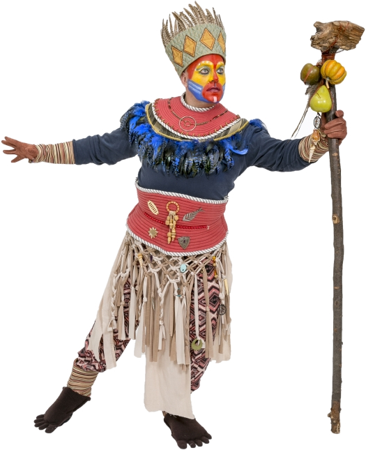 Rental Costumes For The Lion King   Rafiki